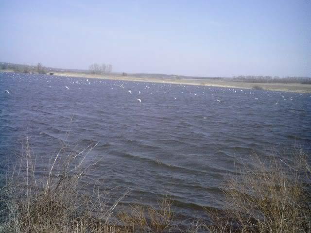 корчма озеро донецкая область