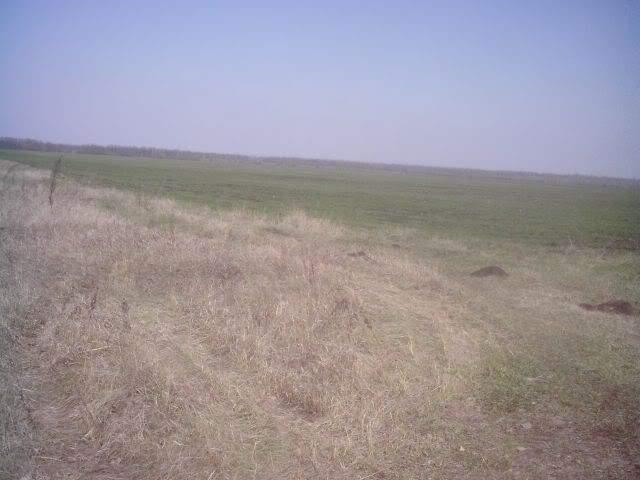 корчма донецкая область