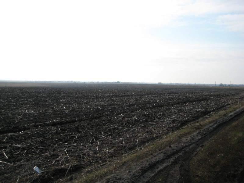 распаханное село кладоискательство днепропетровская область