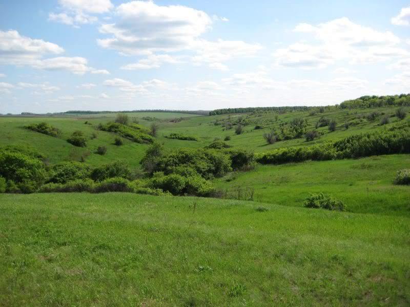 природа Харьковщины