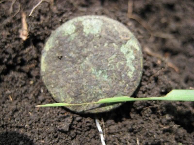 монетка на поле