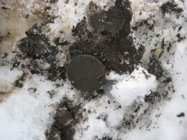 зимний коп монет