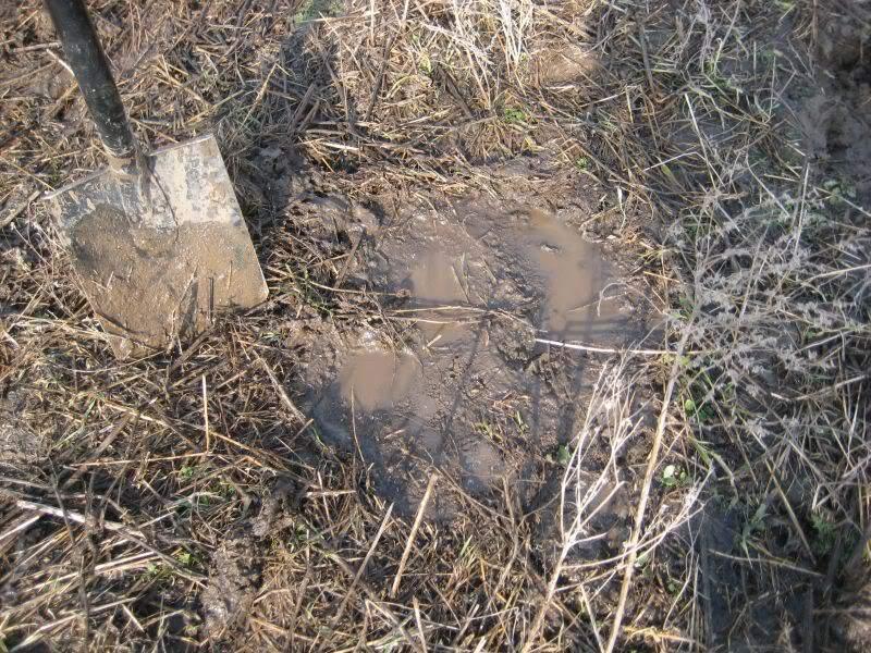 монеткная яма