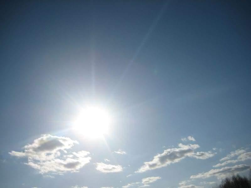 весенний коп солнце