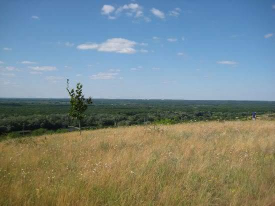 корчма славянск николаевка село