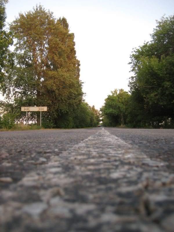 дорога домой коп