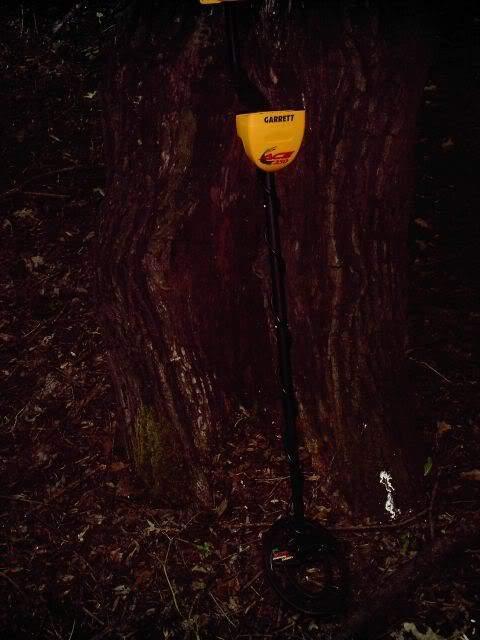 Моя б/у garrett ace 250 металлодетектор в лесу